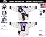 Peoria Rivermen Hockey Fights Cancer Night:  March 28th