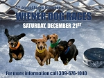 Peoria Rivermen Wiener Dog Races on Ice
